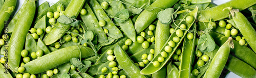 Leinwand Poster Heap of young sweet organic green pea in pods with sprouts