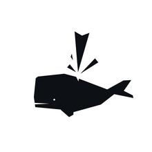 Sperm Whale Fish Water Fountai...