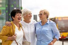 Three Senior Female Friends Ha...