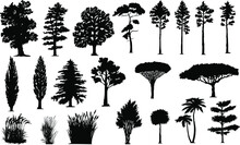 Set Of Trees Silhouettes