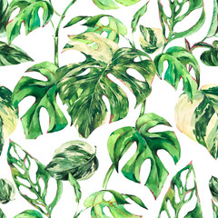 Panel Szklany Podświetlane Vintage Watercolor Monstera Variegated botanical seamless pattern, tropical summer green leaves