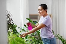 People, Housekeeping And Plants Care Concept - African American Woman Spraying Houseplant With Water Sprayer At Home