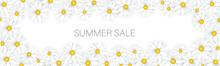 Summer Sale Banner Or Header. White Daisy Flowers Tender Femenine Background. Promo Design Concept. Realistic Vector Illustration With Lettering.