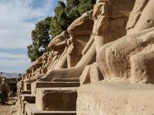 Just At The Entrance At Karnak...