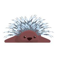 Porcupine Resting Icon. Cartoo...