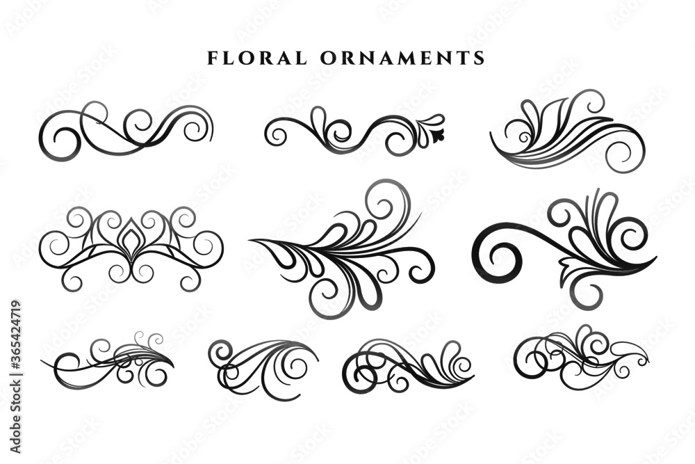 Fototapeta set of floral ornaments decoration swirl patterns