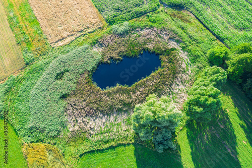 Canvas Print Aerial view of natural pond surrounded by pine trees. Europe