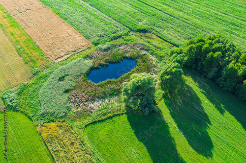 Photo Aerial view of natural pond surrounded by pine trees. Europe