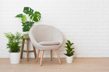 Elegant Armchair And Green Pla...