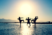 Aikido, Binary, Brave, Compati...