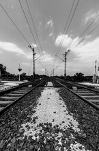 Train Railroad Tracks In The Countryside With Electric Power In Black And White