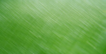 Abstract Blurred Texture Leaf ...