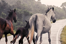 OIL PAINTING OF A HORSE FAMILY...