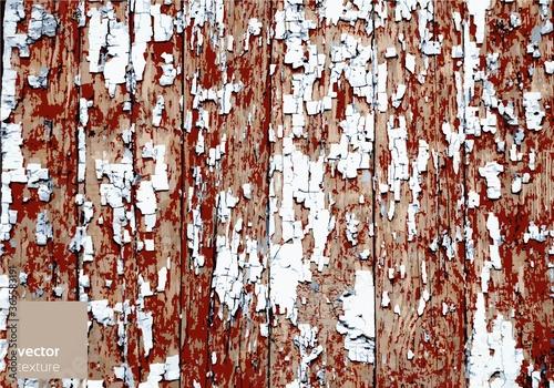 Fototapeta Vector wooden grunge texture background obraz