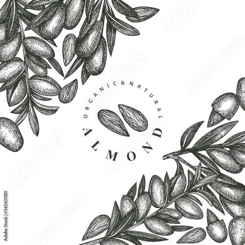 Hand drawn sketch almond design template Canvas Print