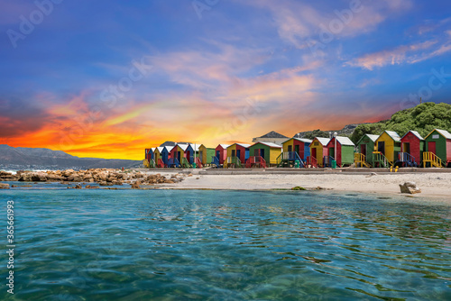 Muizenberg beach huts wooden cabins in Cape Town South Africa Poster Mural XXL