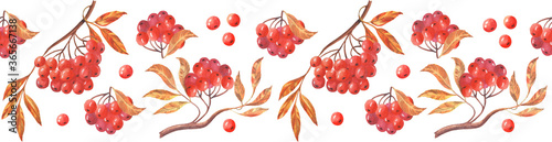 Seamless ribbon border with Rowan berries Fototapete