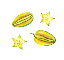 Watercolor Hand Drawn Fresh Yellow Fruit Carambola. Isolated Organic Natural Eco Illustration On White Background.