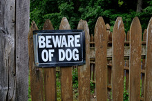 """Photograph Of A """"Beware Of Dog..."""
