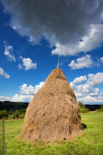 Hay bail harvesting in a summer field landscape Fototapet