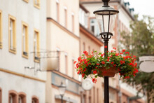 Street Lamp With Flowers And A...