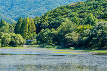 Landscape Of Lake Surrounded By Trees