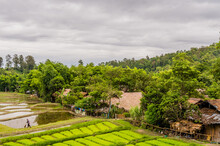 Chiang Mai, Thailand; July 2, 2019: Landscape Of Five Hill Traibes Village House And Rice Paddies With Unidentified Man Working In The Fields. For Editorial Use Only.
