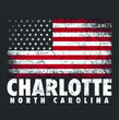 4th Of July Charlotte North Carolina Nc American Flag Usa Premium new design vector illustrator