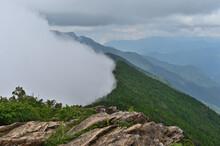 ひがしあかいしやま。赤石山系 石鎚山地から東に延びる支脈の七番越からハネズル山までを赤石山系と呼び、西赤石山、東赤石山、二ツ岳など1400~1700mの山々が連なる。東赤石山はこの山地の中央部に位置し、最高峰である。釣り鐘状のオトメシャジンは固有種で、ここでしか見られない可憐な高山植物である。
