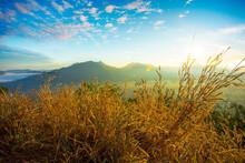 Fog Over Phu Thok Mountain At ...