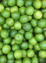 Fresh Organic Limes At A Farm ...