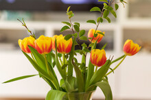 Red-yellow Tulips In A Vase Wi...