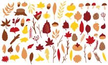 秋の枯葉素材