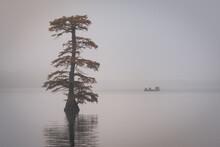 Fishing On Reelfoot Lake In Te...