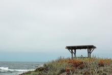 Asilomar State Beach Coastal T...
