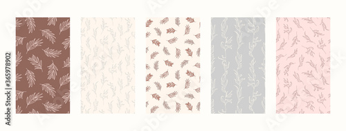 Fotografía Set Backgrounds with Palm leaves and floral Elements