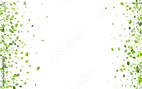 Cuadros en Lienzo Forest Leaves Motion Vector Template. Spring Leaf