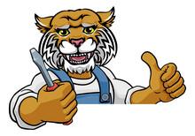A Wildcat Electrician, Handyma...