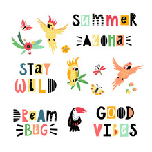 Vector Set With Parrots And Le...