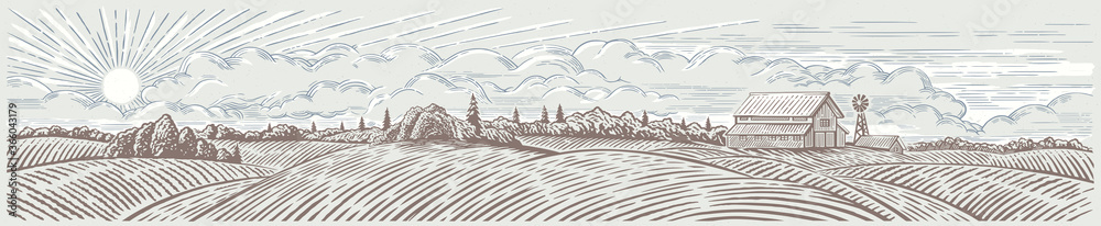 Fototapeta Rural landscape panoramic format with a farm. Hand drawn Illustration in engraving style.