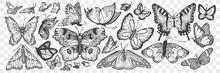 Hand Drawn Butterflies Doodle ...