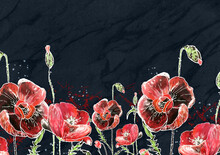 Red Poppies On A Black Backgro...