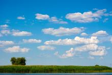 Landscape With Cumulus Clouds,...