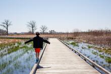 A Boy Walks On The Edge Of A Wooden Bridge Across Wetlands In Spring