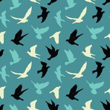 Birds Silhouettes - Flying Sea...