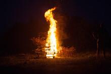 Beautiful Big Bonfire In The F...