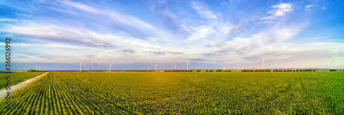 Tablou Canvas Wind power plant in the green field against cloudy sky panoramic