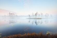 Сrystal Clear Lake (bog) In A...