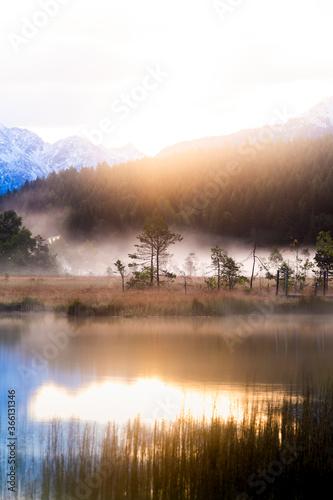 Foggy sunrise at the pond in the Pian di Gembro reserve, Pian di Gembro, Valtellina, Lombardy - 366131346