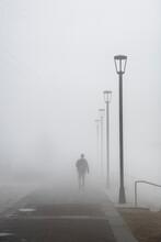 Walking In Dense Morning Fog, ...